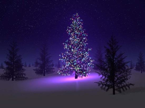 novo leto zima
